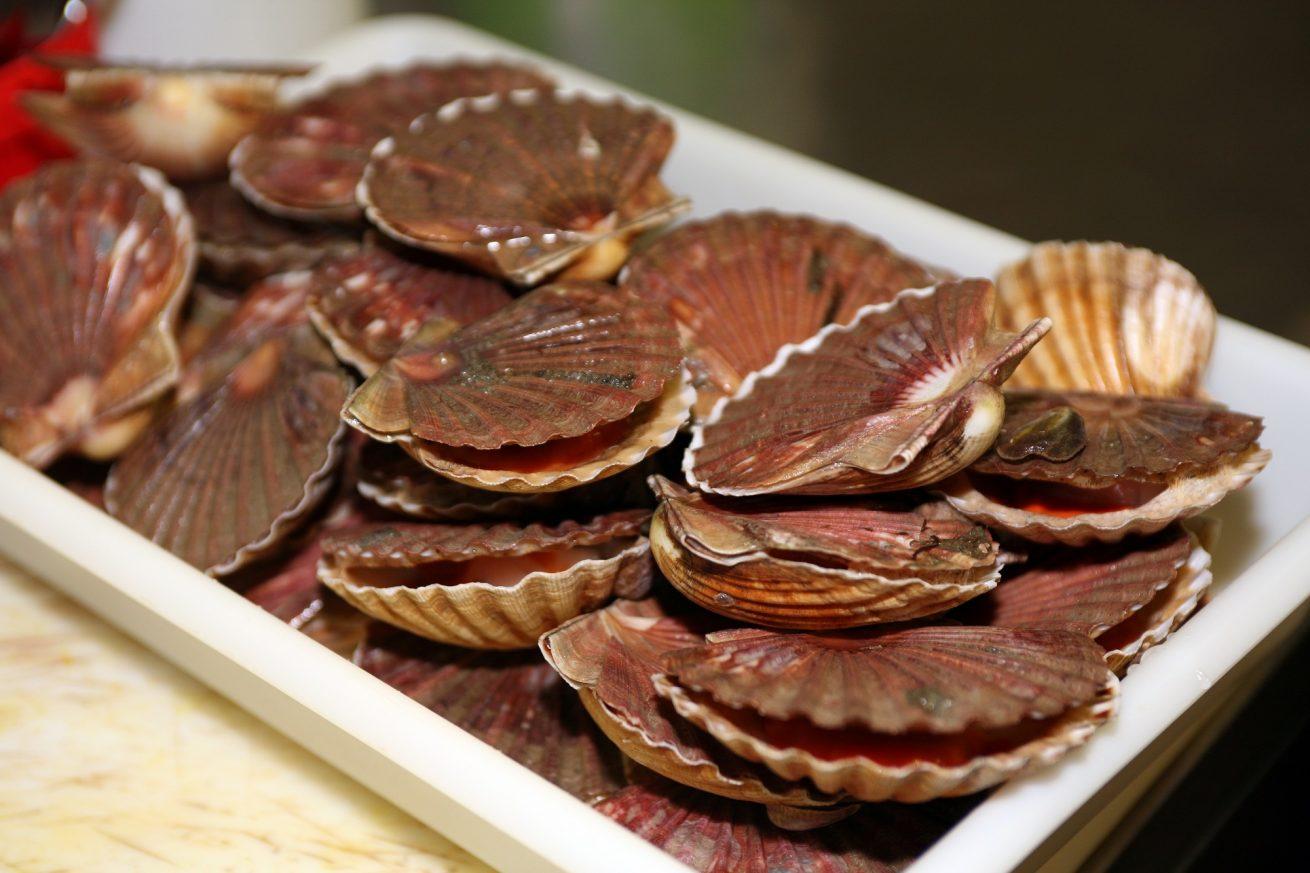 coquille saint jacques restaurant l'azimut trinité sur mer